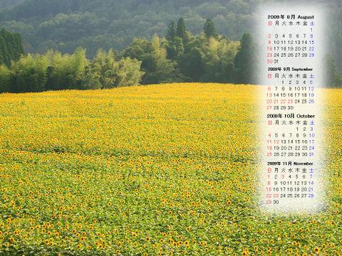 Calendar_200908_010