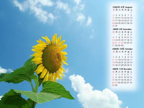 Calendar_200908_011