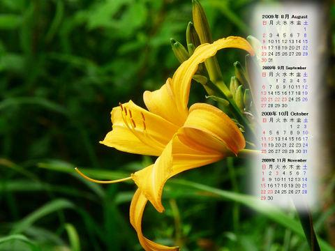 Calendar_200908_013