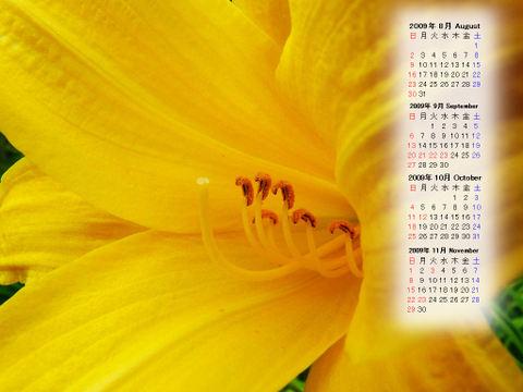 Calendar_200908_014