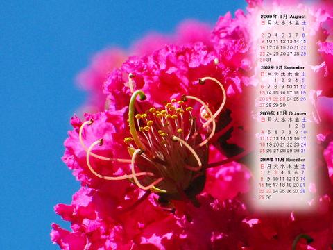 Calendar_200908_018