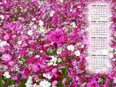 Calendar_200909_003