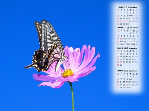 Calendar_200909_006