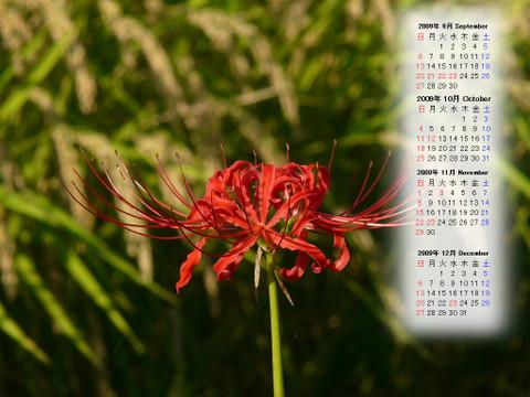 Calendar_200909_016