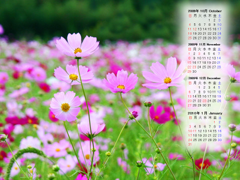 Calendar_200910_001