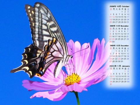 Calendar_200910_002
