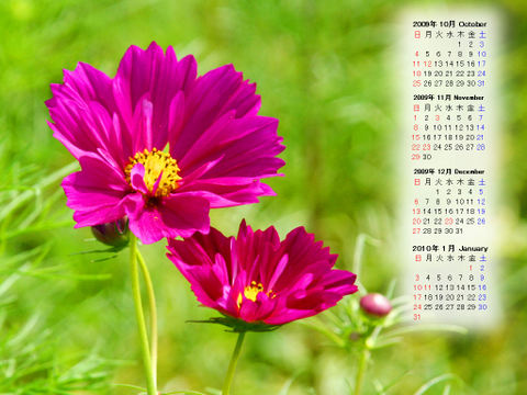 Calendar_200910_003