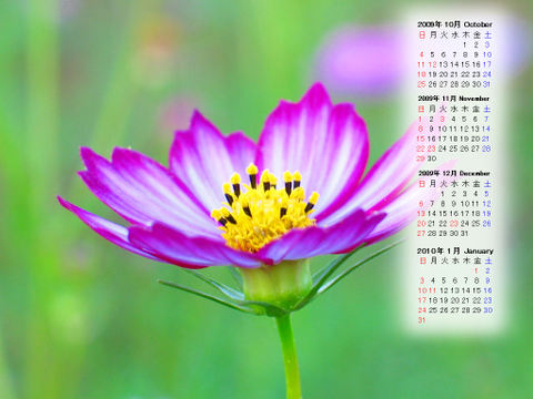 Calendar_200910_004