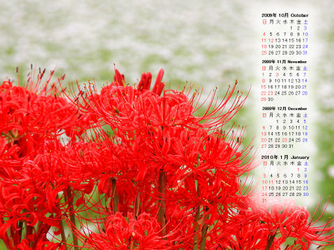 Calendar_200910_009