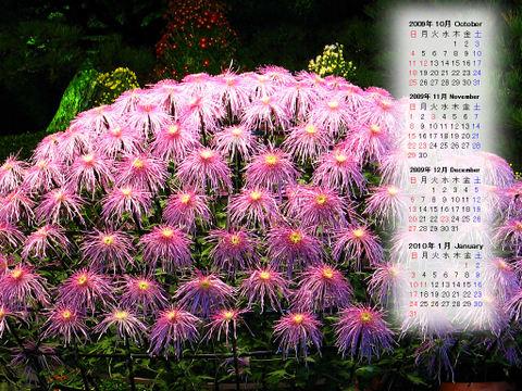 Calendar_200910_011
