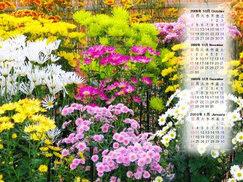 Calendar_200910_014
