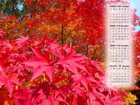 Calendar_200910_017