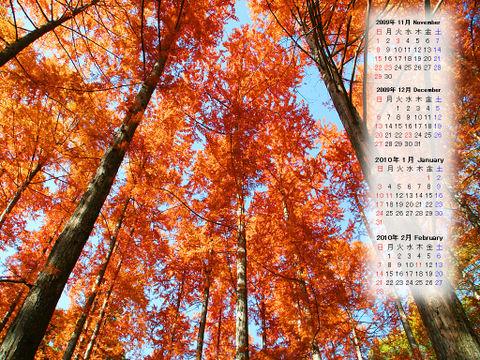 Calendar_200911_003