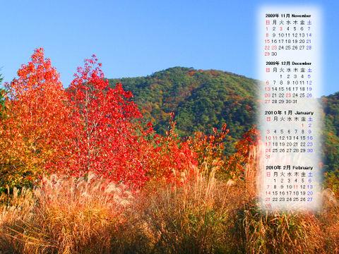 Calendar_200911_004