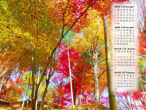 Calendar_200911_006