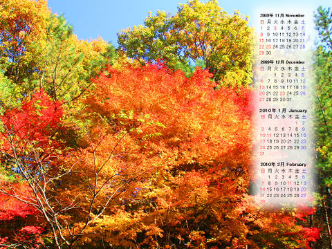 Calendar_200911_007