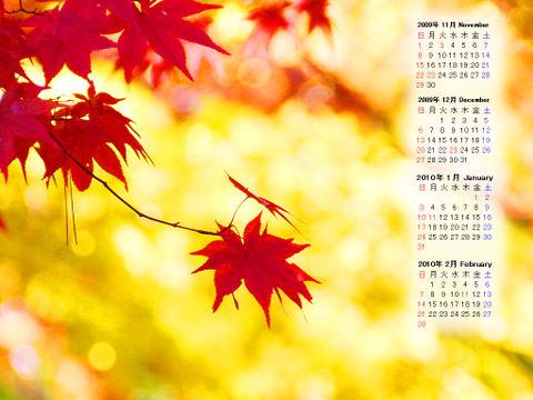 Calendar_200911_008