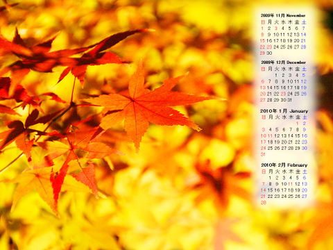 Calendar_200911_010