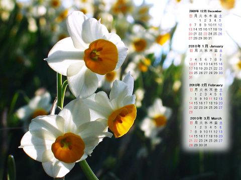 Calendar_200912_020