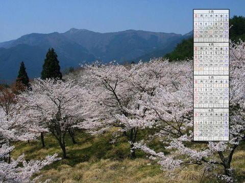 壁紙・桜の風景/2007年無料壁紙カレンダー/2007年3月~2007年6月