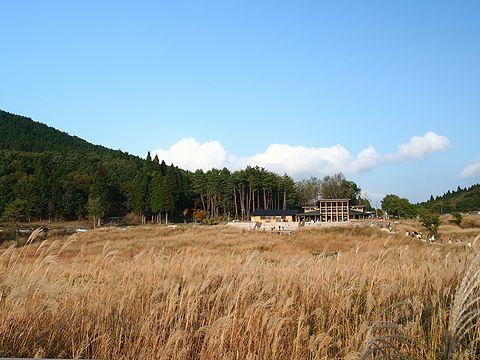すすきの草原ととのみね自然交流館/神河町・砥峰高原