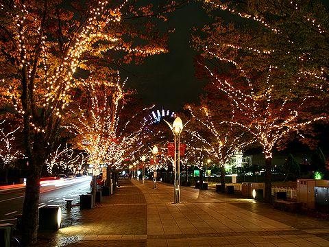神戸ガス灯通りのクリスマスイルミネーション・ハーバーランド/神戸市