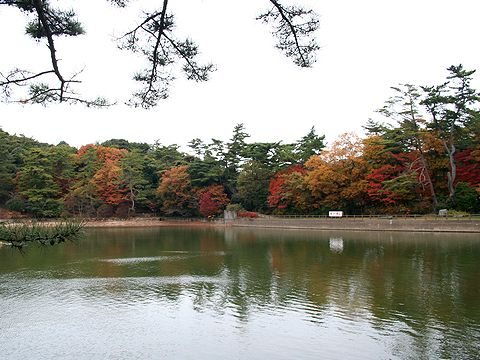 修法ヶ原池・再度公園/神戸市六甲山