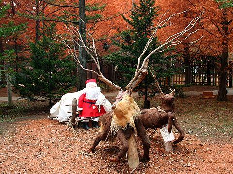 サンタクロースとトナカイ・森林植物園のクリスマス/神戸市六甲山