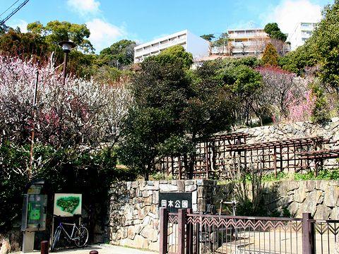 岡本梅林公園/神戸市