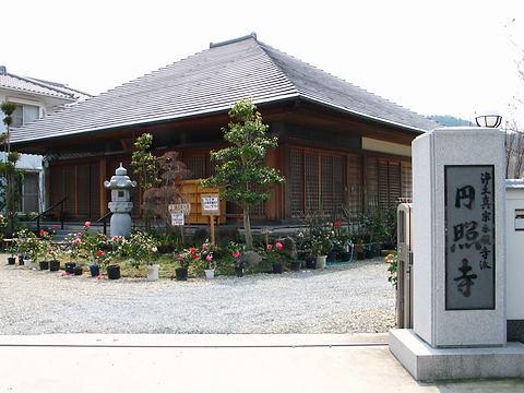 ツバキ寺円照寺/加古川市