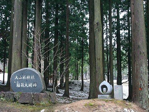 鉢伏山・ハチ北高原のザゼンソウ自生地