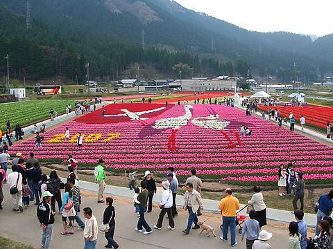 2007年たんとうチューリップまつり・コウノトリの花絵/豊岡市但東町
