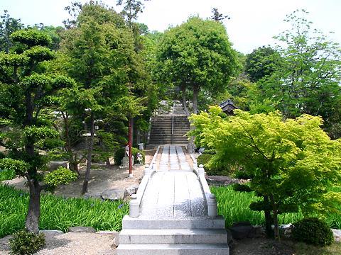 多聞寺の杜若(カキツバタ)の花/神戸市垂水区