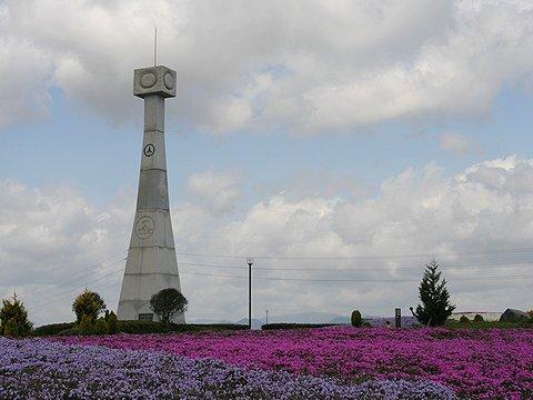 ひまわりの丘公園・ひまわりの塔の芝桜(シバザクラ)