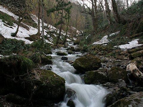 久須部川の渓流沿いにはまだ雪が残っています