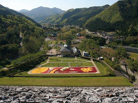 多々良木ダムから見たあさご芸術の森美術館・彫刻公園「インフィオラータあさご2006」