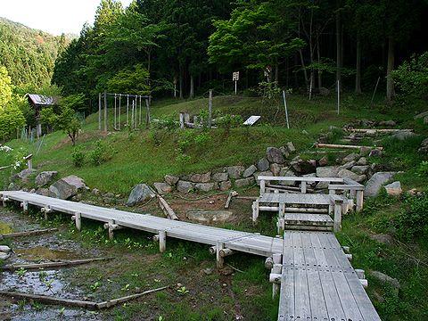 グリーンエコー笠形・クリンソウの保護観察園/神崎郡神河町
