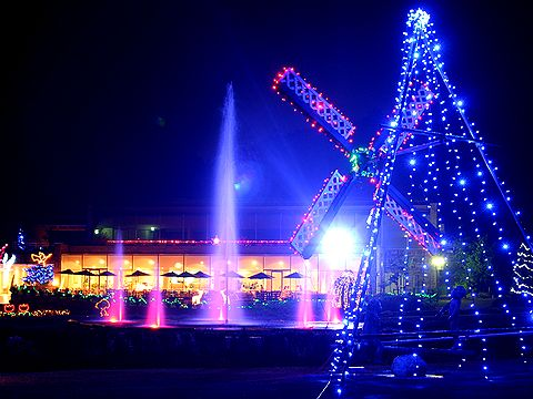 サマーイルミネーション/兵庫県フラワーセンターの夜景