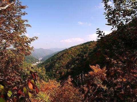 氷ノ山登山道からの風景/養父市