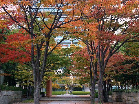 東遊園地の紅葉/神戸市