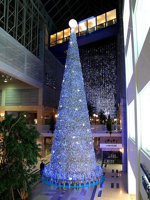 キャナルガーデンのクリスマスツリー/神戸ハーバーランド