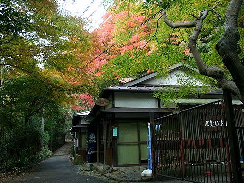 紅葉茶屋・市ヶ原の紅葉/神戸市六甲山