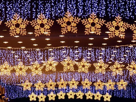 神戸ポートピアホテルのクリスマスイルミネーション/神戸市ポートアイランド