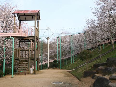 笹が丘公園の桜と日本一のすべり台/佐用町