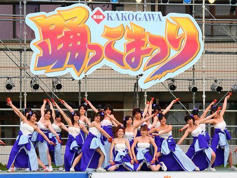 KAKOGAWA踊っこまつり・加古川市役所よさこいステージ/加古川市