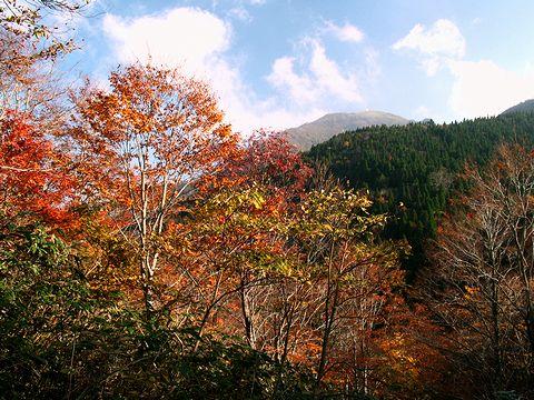 氷ノ山登山道からの風景・氷ノ山の山頂/養父市