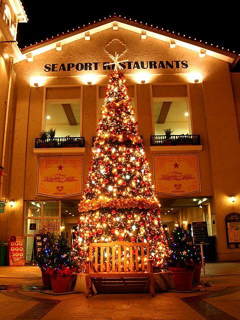 マリンピア神戸 ポルトバザールのクリスマスツリー/神戸市垂水区