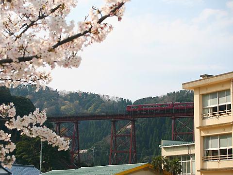 余部鉄橋の桜・余部鉄橋最後の春/香美町