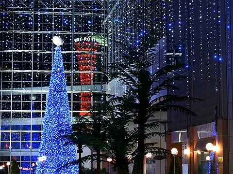 キャナルガーデンのクリスマスツリーと神戸ポートタワー/神戸ハーバーランド