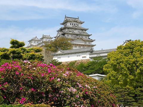 つつじの花と新緑の姫路城/姫路市